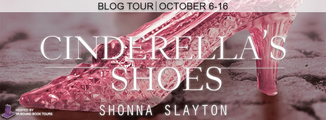 cinderellas shoes blog tour banner